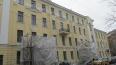Петербуржцы не оценили реставрацию грифонов