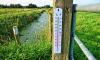 Метеорологи обещают потепление до 30 градусов