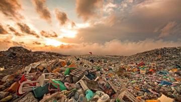 В Петербурге из парка Авиаторов перестали вывозить мусор