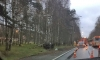 Land Rover срубил столб на Приморском шоссе у Ольгино