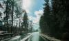В пятницу в Ленобласти выпадет мокрый снег при плюсовой температуре