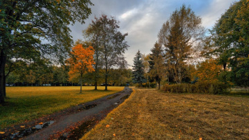 Ремонтные работы в Южно-Приморском парке завершат к 2021 году