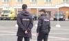 Судьи отомстят пьяному дебоширу из Пушкина за удар в лицо женщине-полицейскому