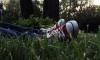 В Ленобласти молодой мужчина подорвался на снаряде времен ВОВ