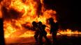 В Ленобласти при пожаре в частном доме погиб человек