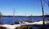 Сезон охоты для жителей Ленобласти откроется в апреле
