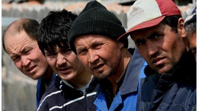 Бизнес-омбудсмен предложил зарегистрировать нелегальных мигрантов и дать им работу