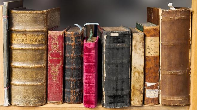 Альтернативная Нобелевская премия по литературе представила список кандидатов
