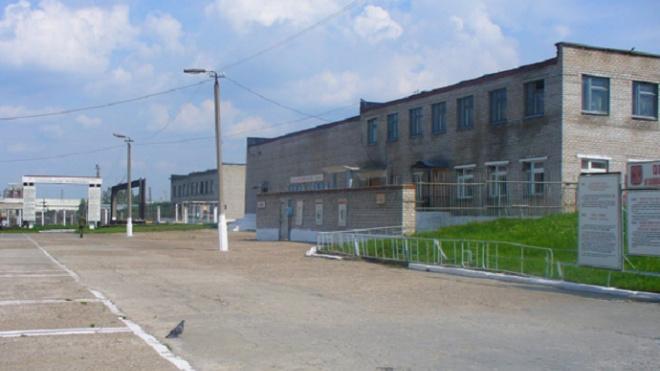 """""""Ночного губернатора"""" Петербурга перевели в колонию для больных туберкулезом"""