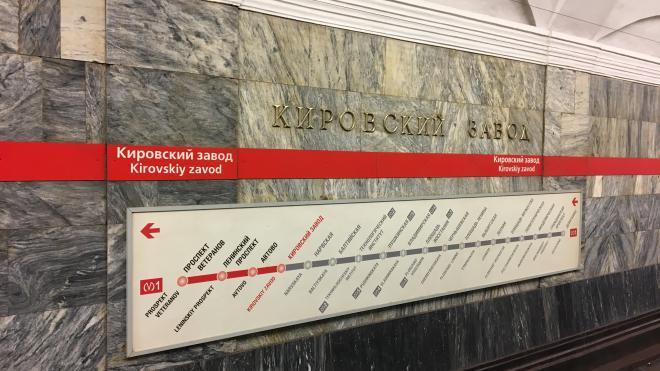 Движение по красной ветке метро прервалось из-за упавшего на рельсы слепого мужчины