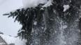 В Петербурге во вторник похолодает до минус 3 градусов