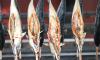 Жителя Ленобласти оштрафовали за улов в четыре форели