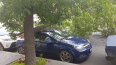 Дерево упало на машину и перегородило проезд на Степана ...