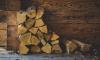Смольный выделил субсидии поставщикам угля и дров населению