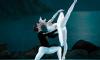 Балерина Терешкина получила звание народной артисткой России