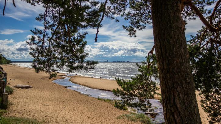 Комитет по благоустройству подготовил 20 пляжей к летнему сезону