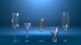 Петербургская полиция помогла индийцу найти пять стакано...