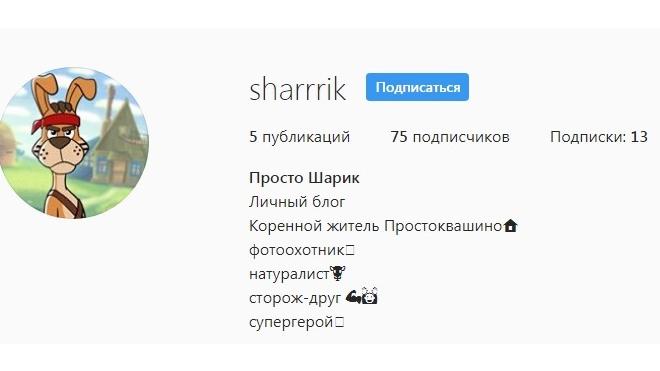 """Шарик из """"Простоквашино"""" зарегистрировался в Instagram"""