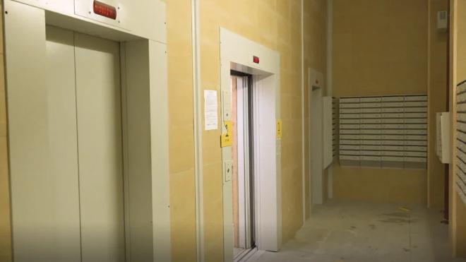 В Петербурге задержали таксиста-мигранта, ограбившего клиентку возле лифта в Мурино