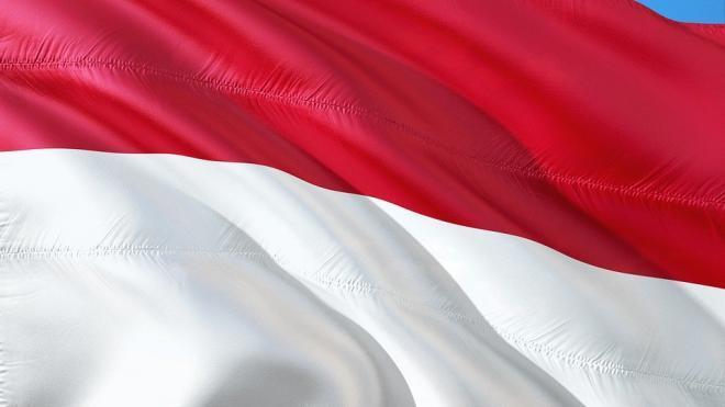 Названа предварительная причина крушения Boeing 737 в Индонезии