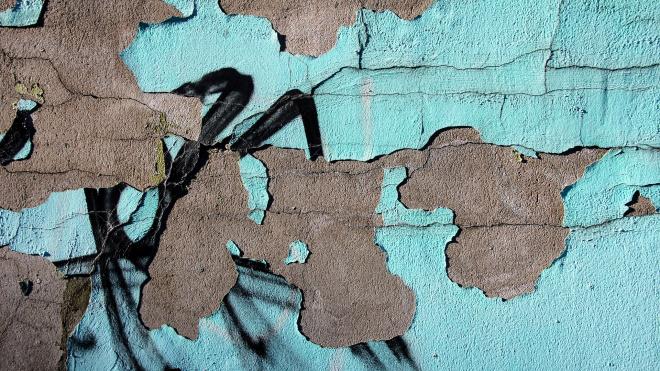 Чиновники и уличные художники обсудили судьбу стрит-арта в Петербурге