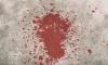 В Петербурге мужчина убил младшего брата ударом в сердце