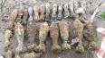 На Пулковском шоссе в очередной раз нашли боеприпасы ...