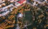 В Петербурге из-за сильного ветра закрыли некоторые сады и скверы