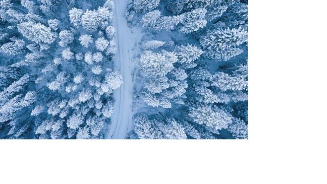 В воскресенье в Ленобласти ожидается мокрый снег и метель