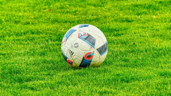 Петербуржцы перед ЧМ скупают дорогие мячи и футбольные симуляторы