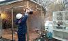 В четырех районах Северной столицы снесли незаконные ларьки