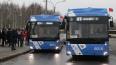 Три оттенка синего: в Петербурге началось голосование ...
