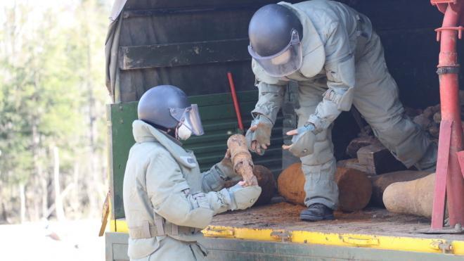 На стройке в Петербурге нашли шесть боеприпасов времен ВОВ