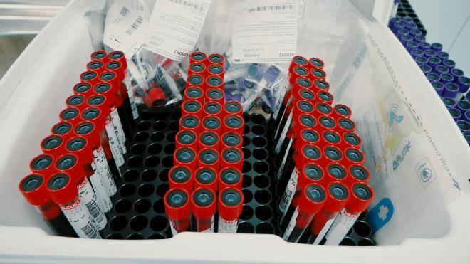 Около 100 литров крови пожертвовали петербуржцы больницам