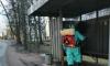 Приморское городское поселение принимает активные меры против коронавируса