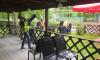 Хозяин летнего кафе в Южно-Приморском парке едва не поджег сотрудников ККИ