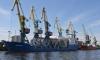 В Петербург не пустили 25 тонн подозрительной китайской рыбы