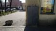 Закрашенное граффити на Херсонской расстроило петербуржц...