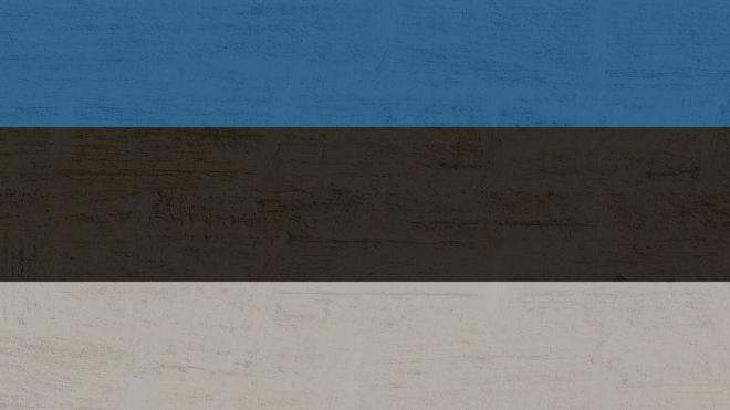 Бывший президент Эстонии порекомендовал Евросоюзу запретить россиянам въезд в ЕС
