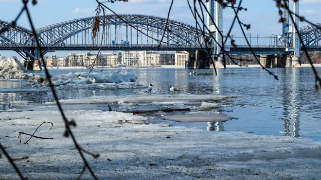 На этой неделе в Петербурге разведут восемь мостов