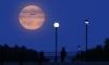 """Россияне смогут увидеть затмение """"суперлуны"""": последний раз такое было 33 года назад"""