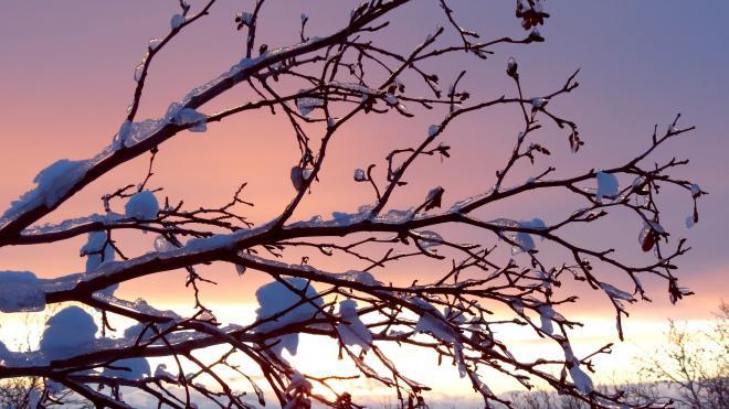 Петербург в субботу накроет мокрый снег и дождь при плюсовой температуре