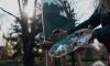 """В Выборгском районе пройдет пленэр-фестиваль """"И на камнях растут деревья"""""""