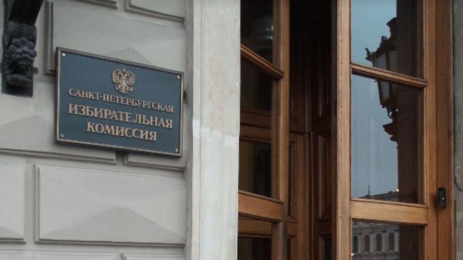 Горизбирком получил 326 миллионов рублей на проведение голосования по Конституции