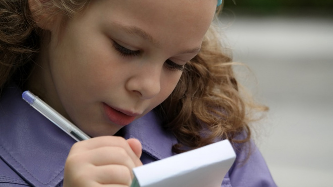 Депутат из Ленобласти предложил научить школьников писать жалобы