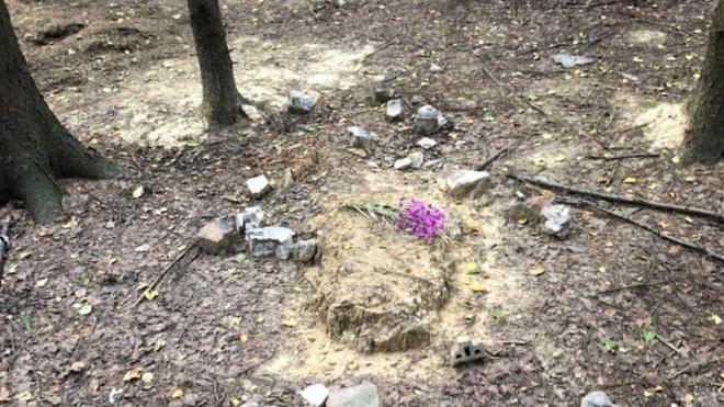 Неизвестные разгромили кладбище домашних животных в Новом Девяткино