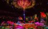 """Петербуржцы смогут побывать на шоу Cirque du Soleil по мотивам """"Аватара"""" с 8 по 12 мая"""