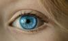 Возле школы на Будапештской улице шестикласснику подстрелили глаз