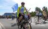 Петербург потратит 750 млн рублей на создание сети велодорожек