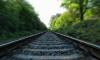 У станции Белоостров выпившего петербуржца сбил поезд